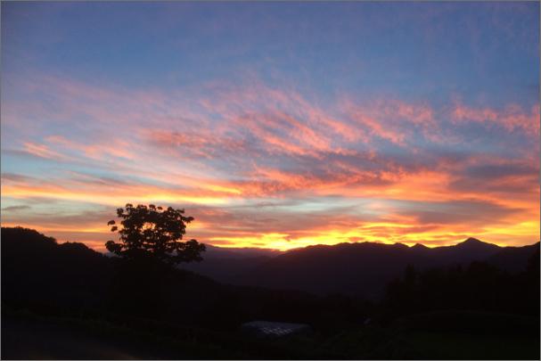 紅く染まる夕日